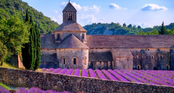 Školní zájezdy do Provence
